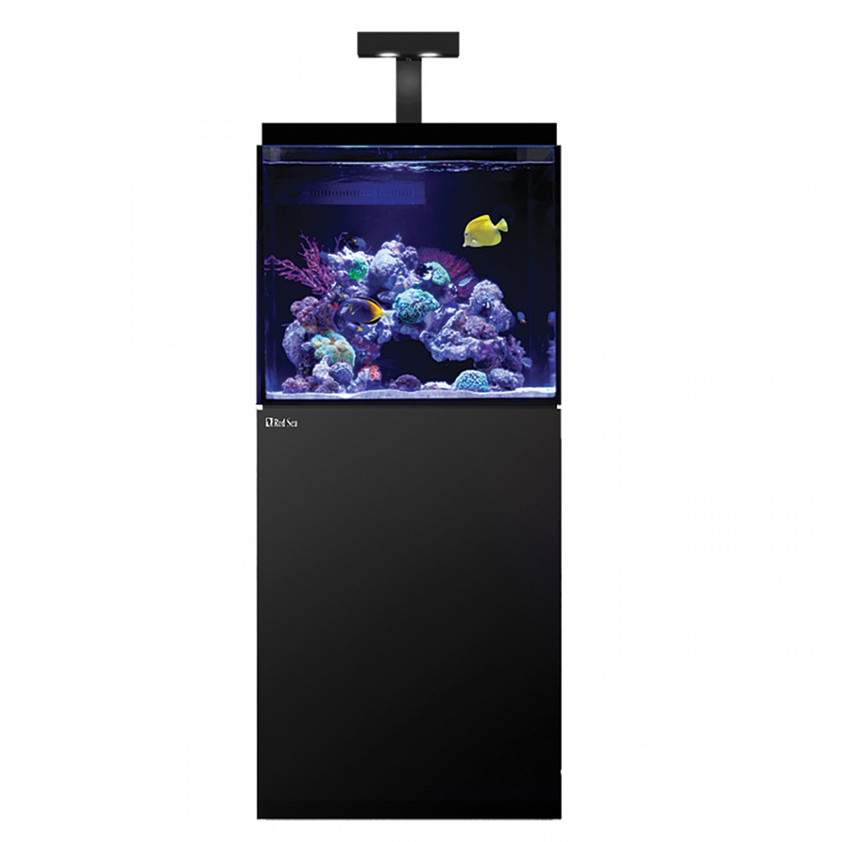 Red sea max e 170 reef spec aquarium system with stand for 37 gallon fish tank