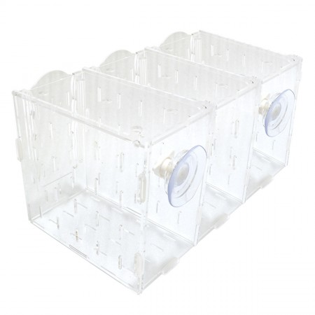 "Wavereef Acclimation Tank - 3 Compartments - 12"" x 8"" x 7"""