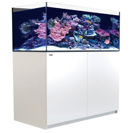 Red Sea REEFER XL Rimless Reef-Ready Aquarium System - 425 - White