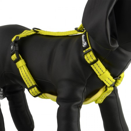 Great Jack's Essentials Visibility Adventure Harnesses