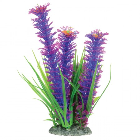 Underwater Treasures Ambulia - Violet - 10""
