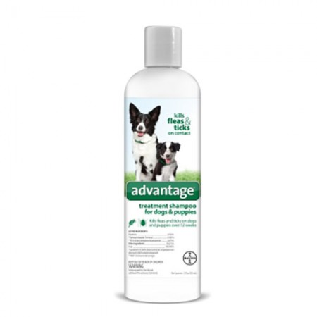 Bayer Inc. Advantage Flea and Tick Treatment Shampoo for Dogs - 12 oz
