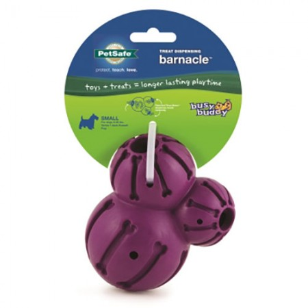 Pet Safe Pro Busy Buddy Barnacle - Small