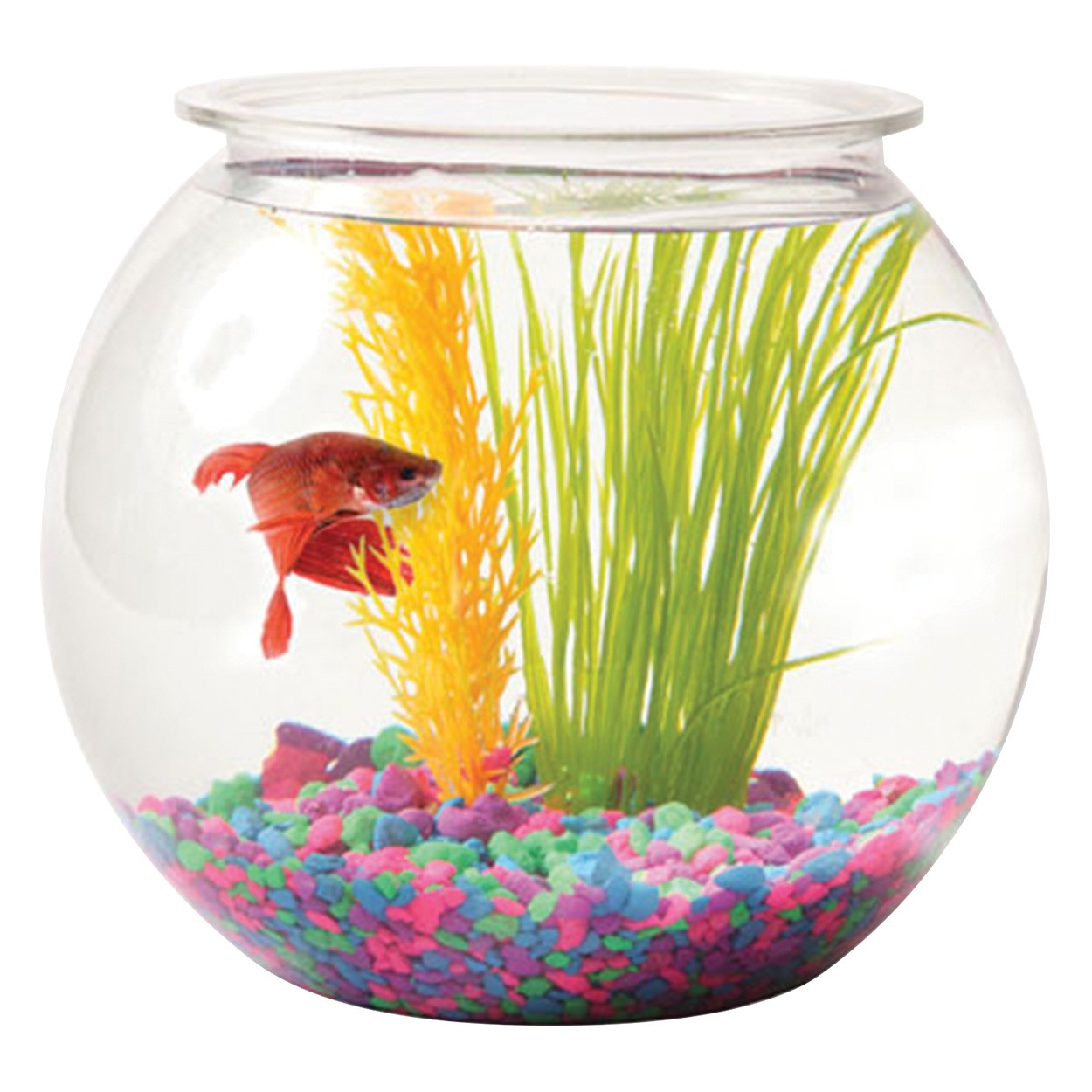 Tom aquatics plastic goldfish bowls for Caring for a betta fish in a bowl