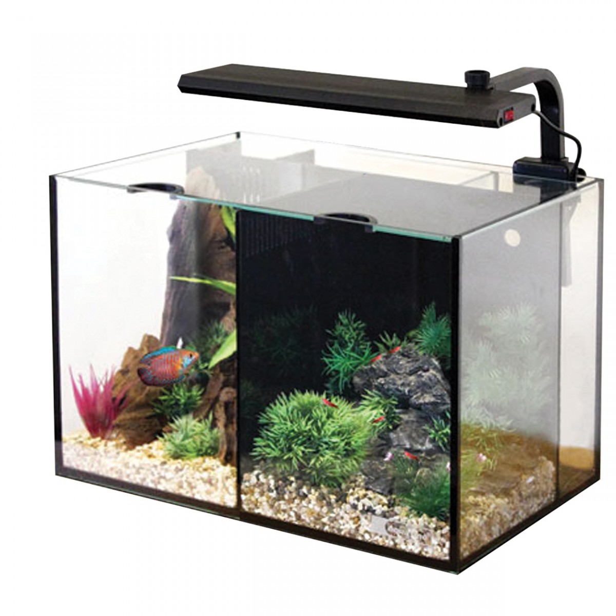 Aqua one betta aquariums for 2 gallon betta fish tank