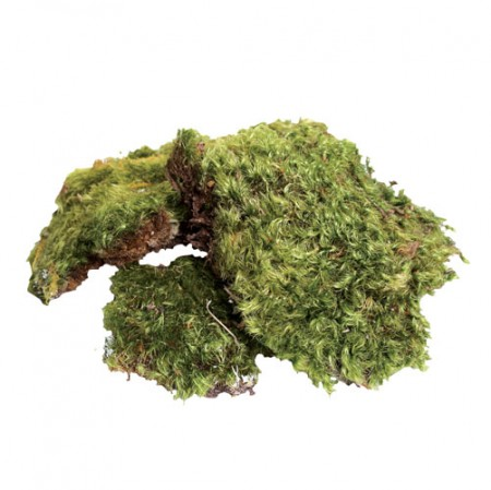 Zoo Med All Natural Frog Moss - 80 Cubic Inches