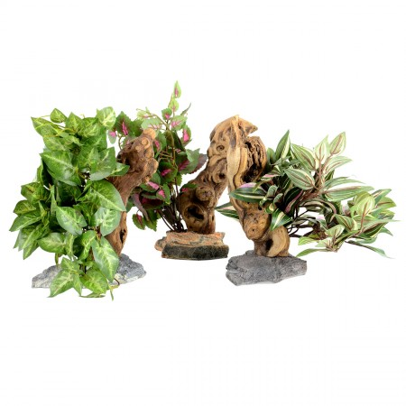 Habi-Scape Tropical Plant with Driftwood