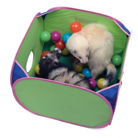 Marshall Pop-N-Play Ball Pit for Ferrets