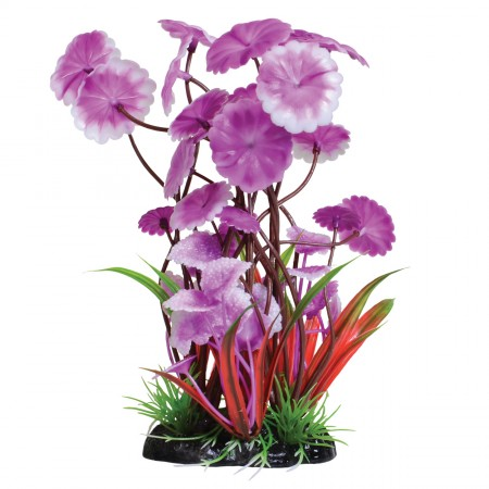 Underwater Treasures Fuscia Love Lily - 8""
