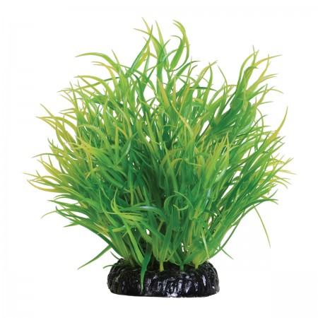 Underwater Treasures Lemon Grass - 6""