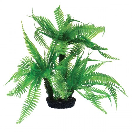 Underwater Treasures Jurassic Fern - 10""