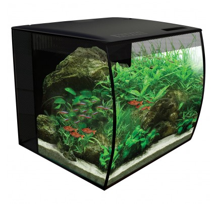 Fluval Flex Freshwater Kit - 9 gal  sc 1 st  Big Alu0027s Pets & Aquarium Fish Tank Stands Kits Systems and Bows