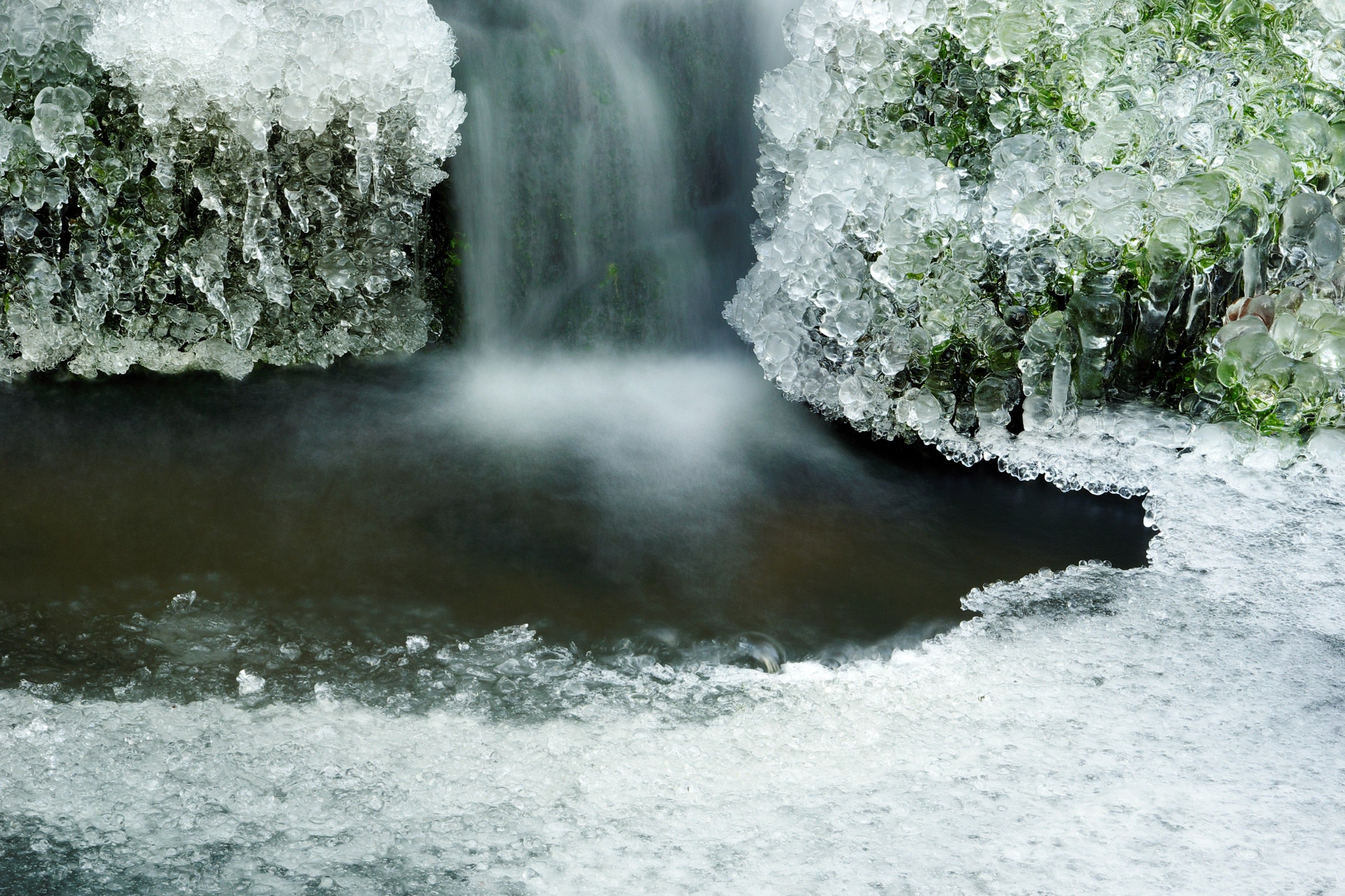 Closing Your Pond for Winter