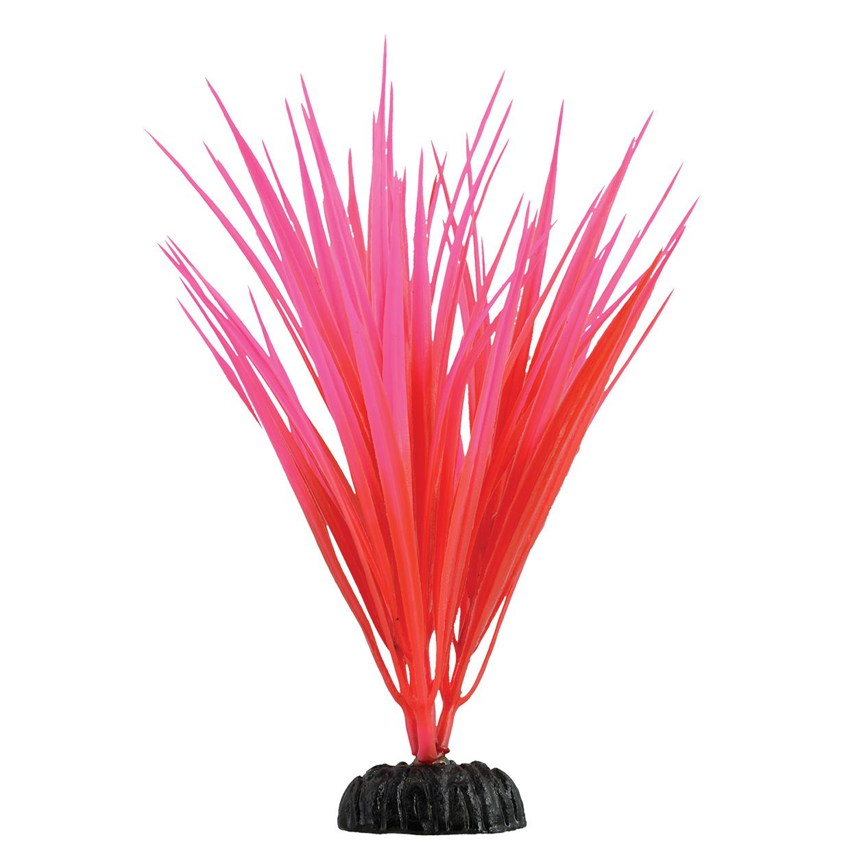 Underwater Treasures Rose Nile Grass - 7.5 inch