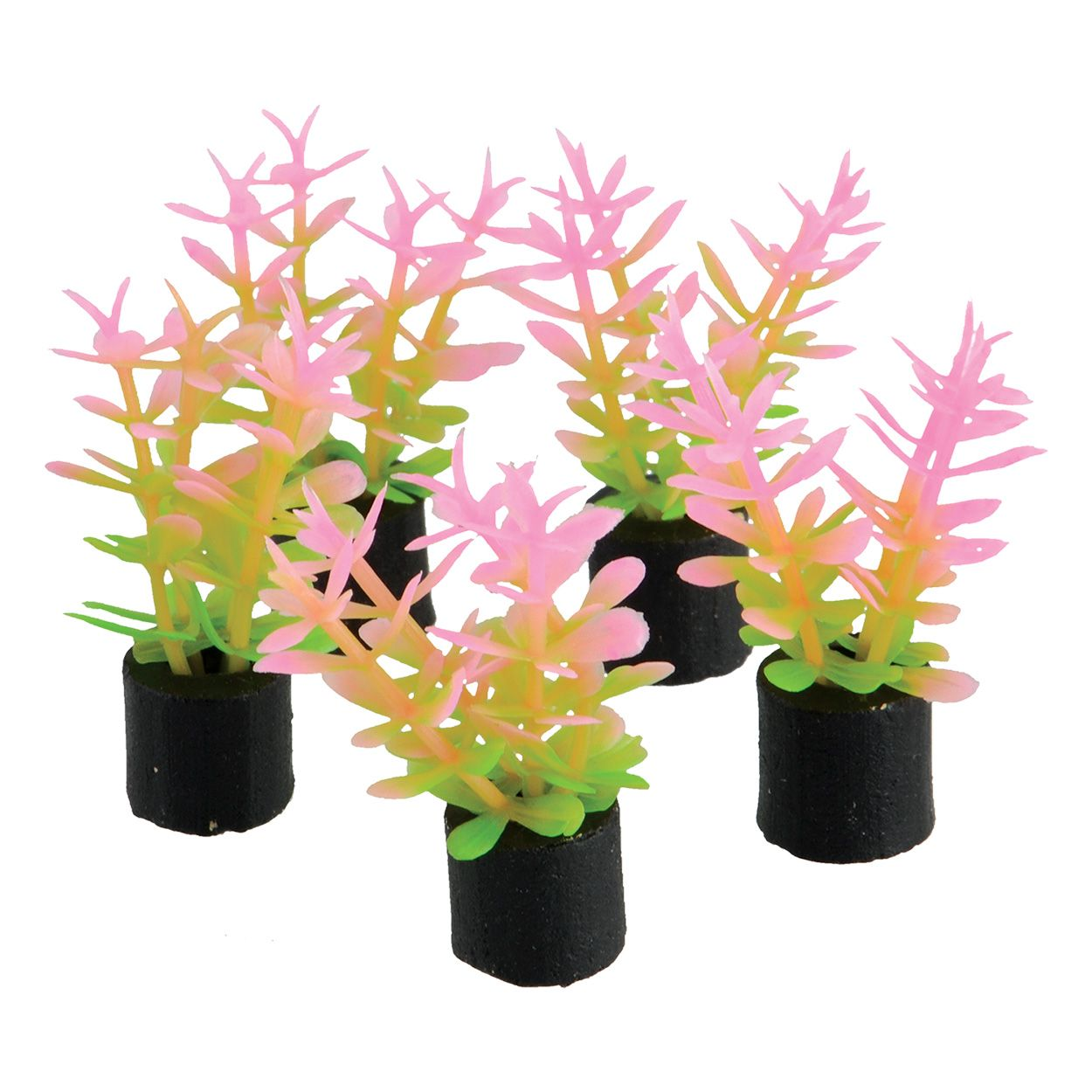 Underwater Treasures Pink and Green Mini Plant - 1.5 inch (5 pk)