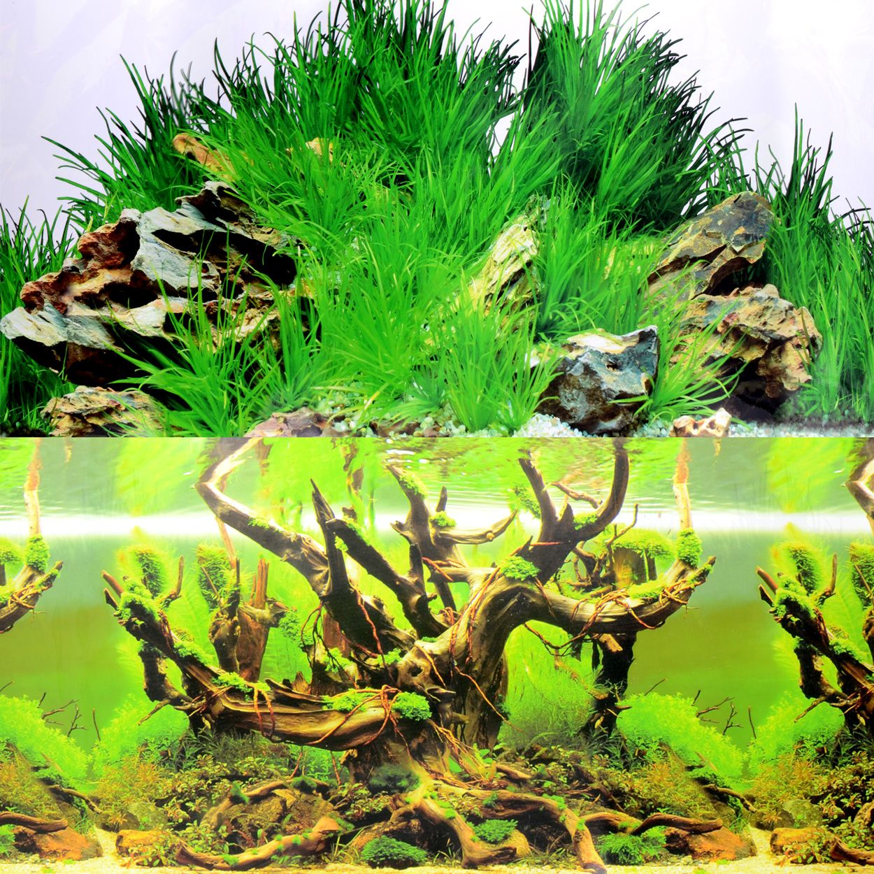 Underwater Treasures Grassy Tree & Boulder Reversible Background - 20 inch (Sold by the Foot)