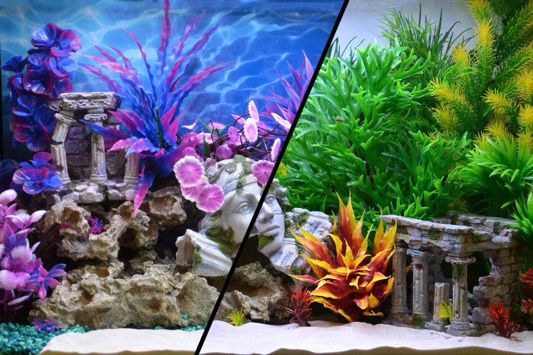 Themed Aquarium of the Month June 2017 - Natural vs Whimsical Roman Ruins (Double Feature)