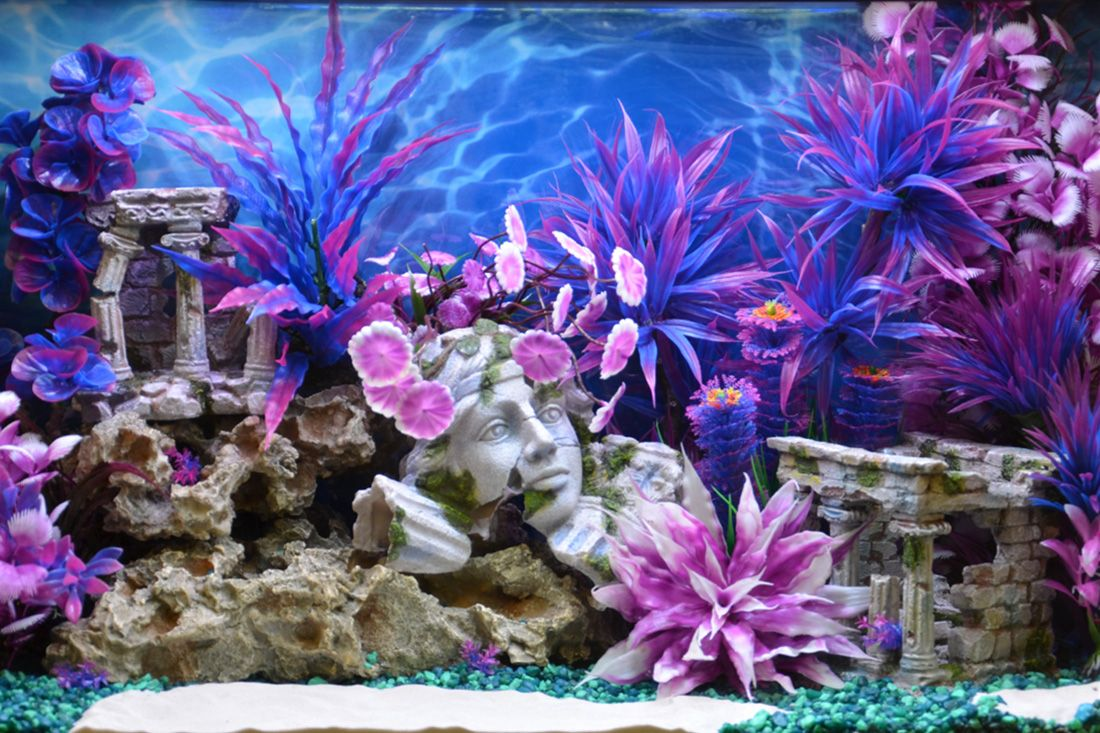 Whimsical Style Roman Ruins - Big Al's Pets Themed Aquarium of the Month June 2017