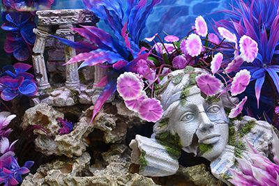 Face Sculpture and Ruins - Natural Style Roman Ruins - Big Al's Pets Themed Aquarium of the Month June 2017