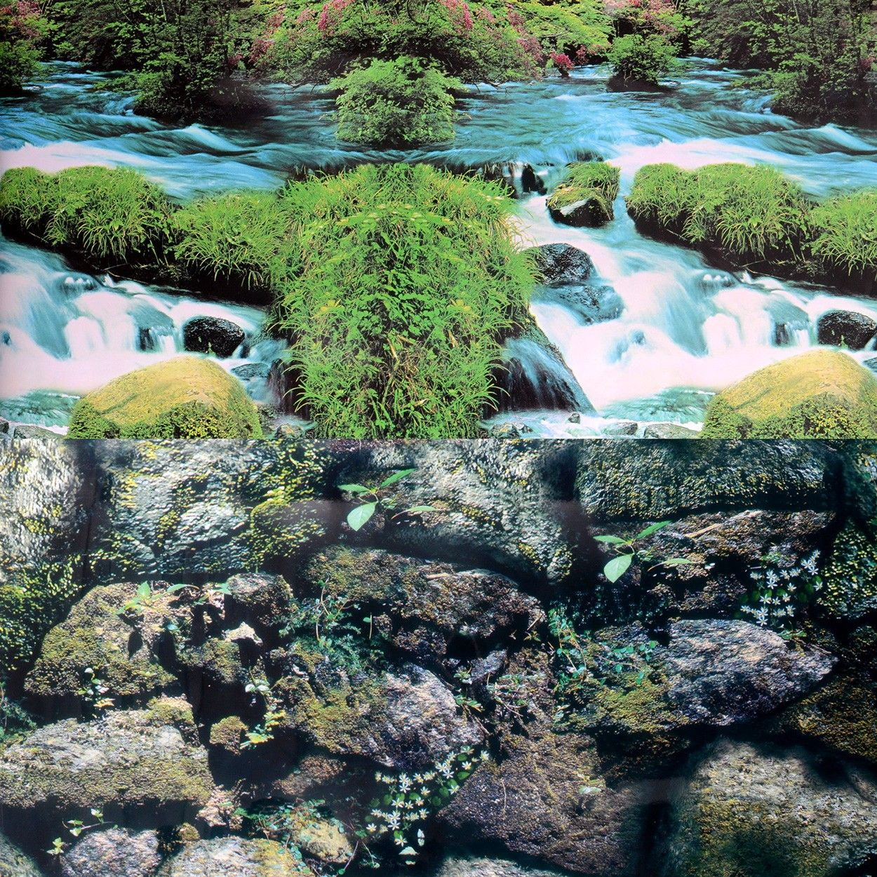 Underwater Treasures Stoney Brook/Rock Wall Reversible Background - 24 inch (Sold by the Foot)