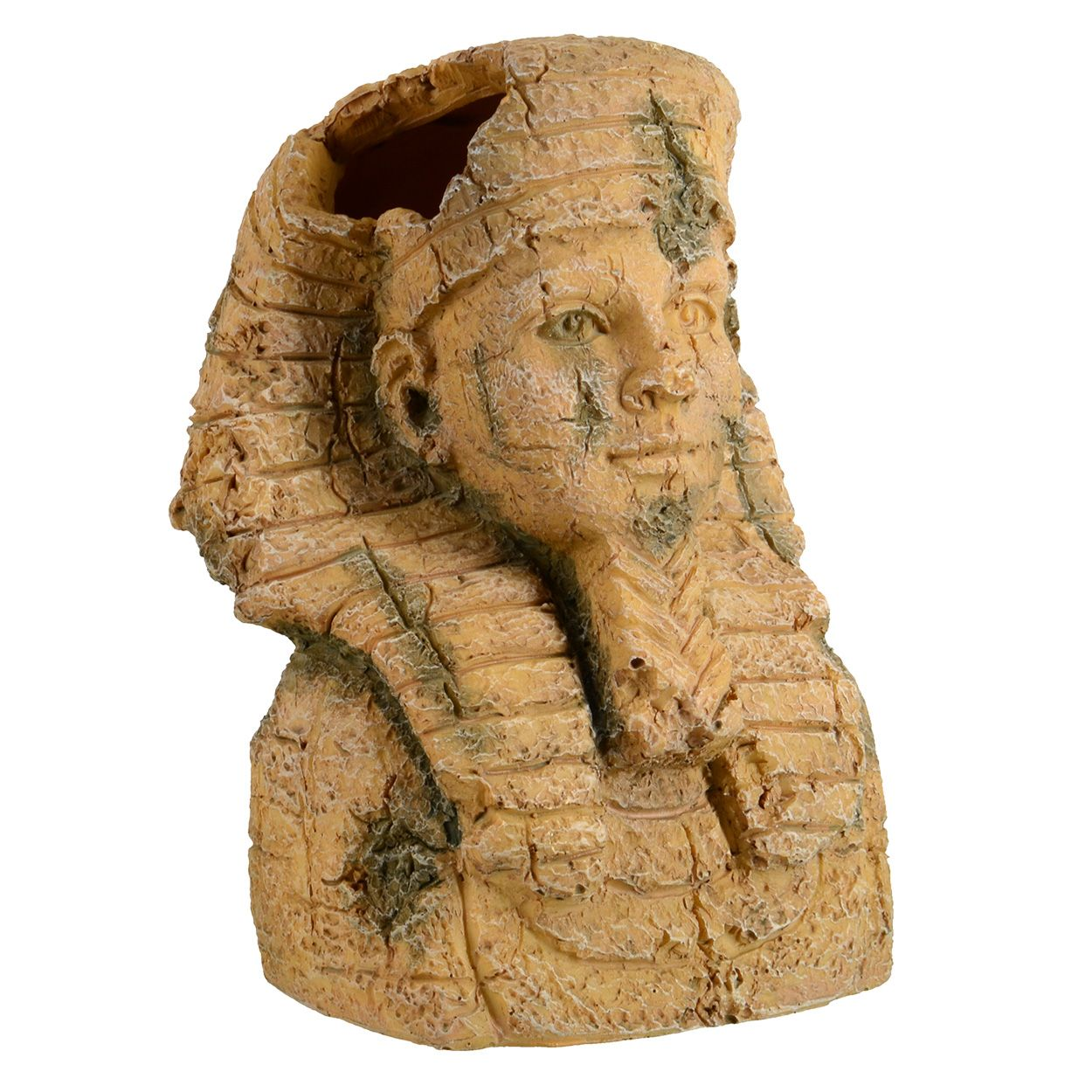 Underwater Treasures Egyptian Pharaoh Head