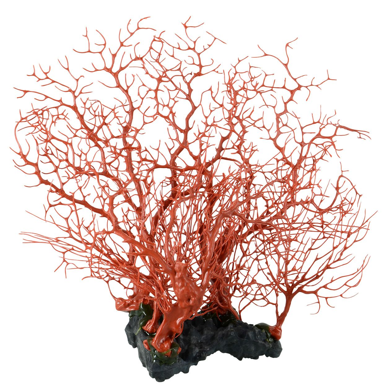 Underwater Treasures Sea Fan Cluster