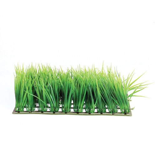 Underwater Treasures Hairgrass Mat - 10 inch