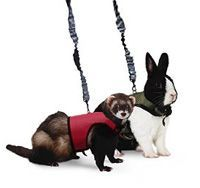 Small Animal Leashes, Leads & Harnesses